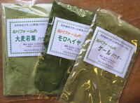 石川ファーム 野菜パウダー 【青葉3点セット(ケール・大麦若葉・モロヘイヤ)】