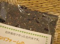 石川ファーム 古代米【黒米】