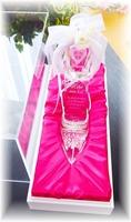 NEW【シンデレラのガラスの靴・豪華アクリルケース】