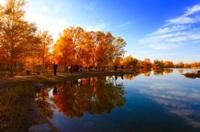 秋を感じる季節となりましたね!