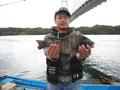 40センチ以上のクロダイが釣れたよ!