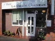 Hair La Seule Cheveux