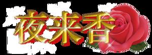 春日井の中国式マッサージ「夜来香〜イエライシャン」