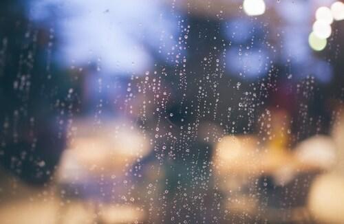 今日は梅雨の中休み♪