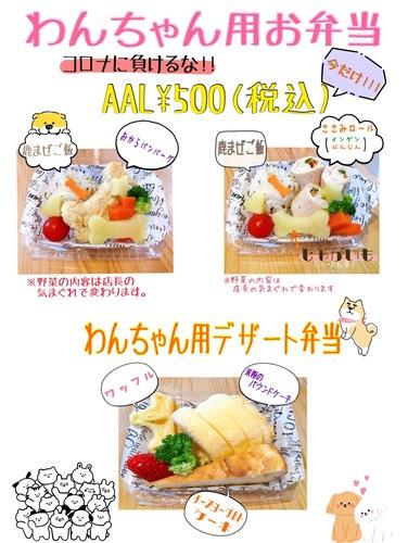 わんちゃん用お弁当