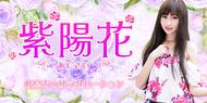 紫陽花(あじさい)|岐阜市・都通のリラクゼーションマッサージ